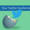LogicalJack Twitter Guide:All About Your Twitter Audience