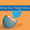 LogicalJack Twitter Guide: What Do I Tweet About